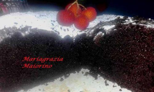 Torta Cioccolatosa – Nuvola Nera